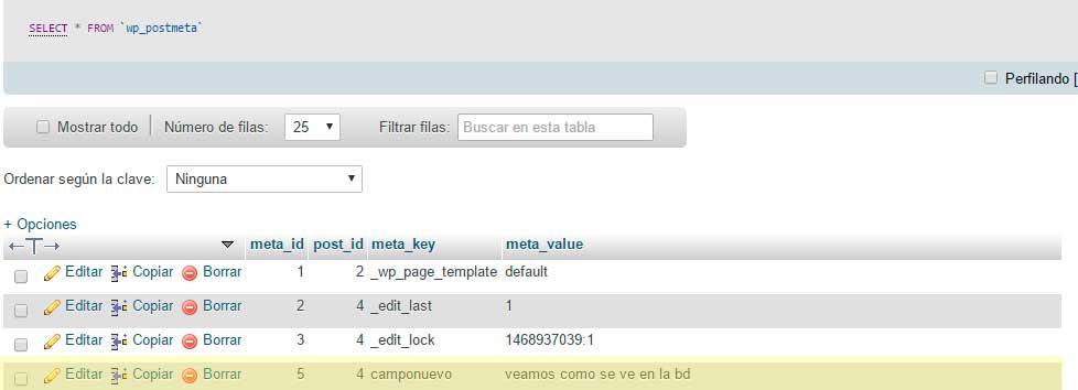 ejemplo-campo-nuevo-metadata-wordpress